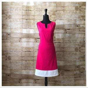 THE LIMITED PINK/WHITE DRESS IN FIT &FLARE